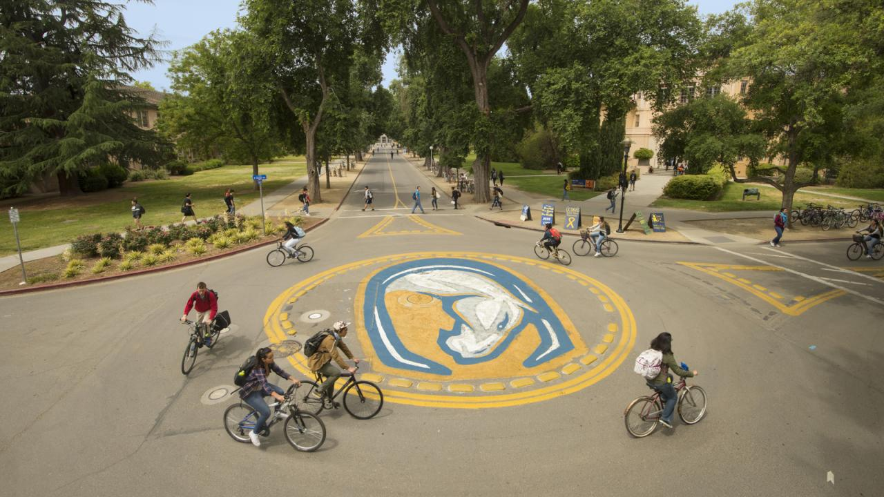 Karin Higgins/ UC Davis © Regents of the University of California, Davis campus. All rights reserved. The intersection of West Quad and Shields Avenue on the UC Davis campus